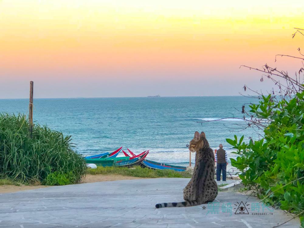 白沙灣美食 豹豹咖啡館 六隻豹貓等你的貓咪咖啡廳推薦