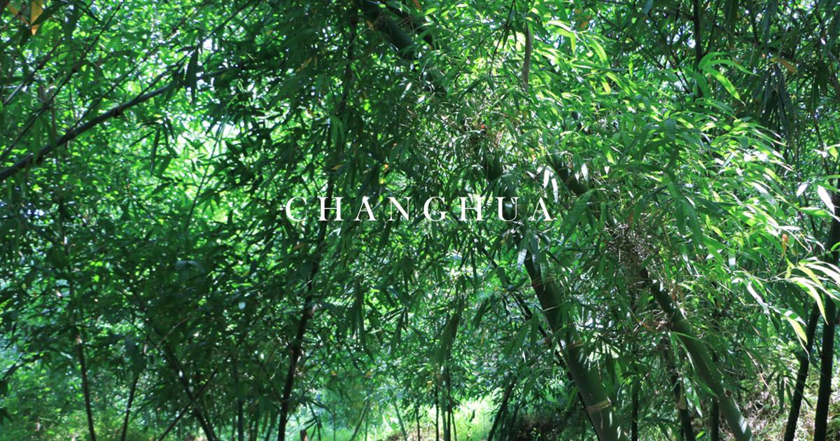 原來這是甜龍筍!跟著花壇竹筍小農宋成到竹林裡探險